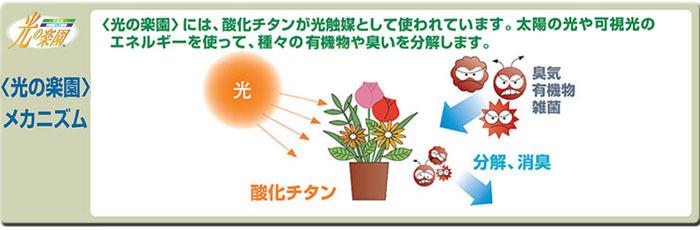 光触媒人工観葉植物、アートフラワー(光触媒造花)光の楽園の光触媒について