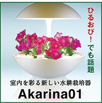 akarina01