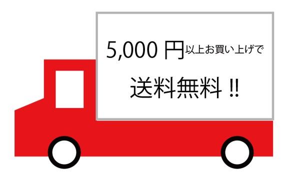 送料5000円画像
