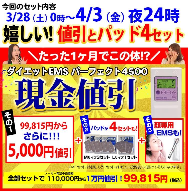 干渉波EMSマシン パーフェクト4500
