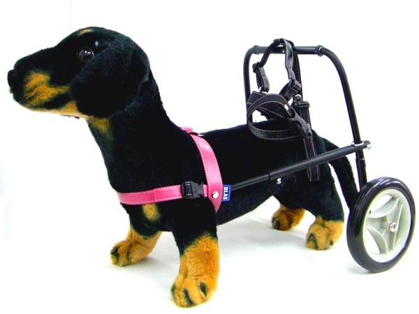 犬用車椅子・DAW