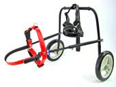 犬用車椅子・赤
