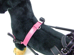 犬用車椅子・散歩リード用フック