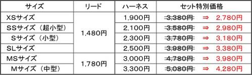 セット価格表