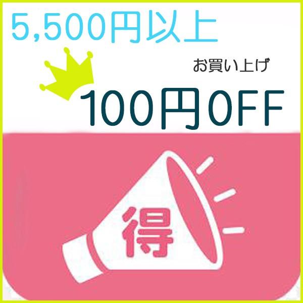 お買い上げ5500円以上購入すると100円割引クーポン