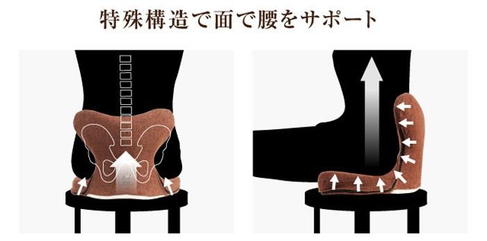 特殊構造で面で腰をサポート