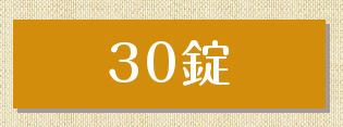 薬用重炭酸湯HOTTAB 30錠