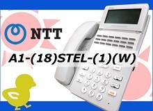 A1-(18)STEL-(1)(W) NTT αA1