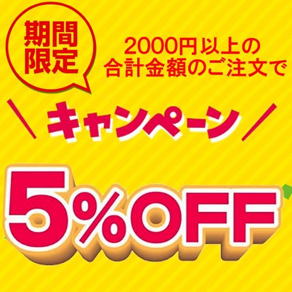 週末2000円以上のご注文で5%OFF!クーポン