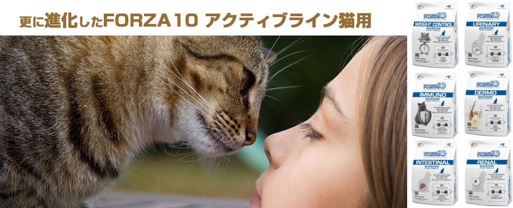 フォルツァ10猫 NEW アクティブライン