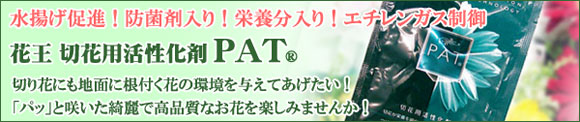 花王 切花用活性化剤PAT(R)
