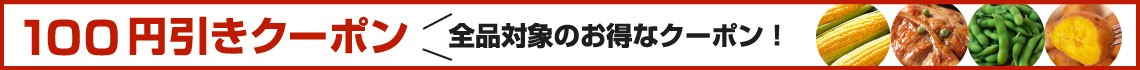 100円引き大バナー