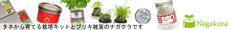 栽培キットとブリキ雑貨のナガクラ