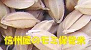 籾米保管米