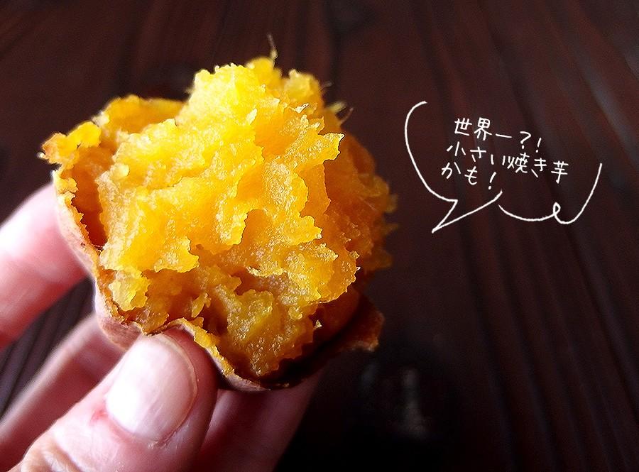 世界一小さい焼き芋