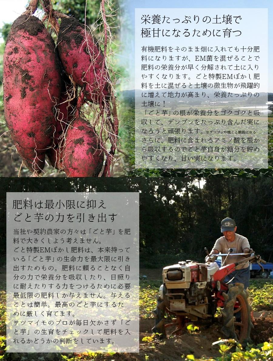 ポイント3:EMぼかし肥料の効果