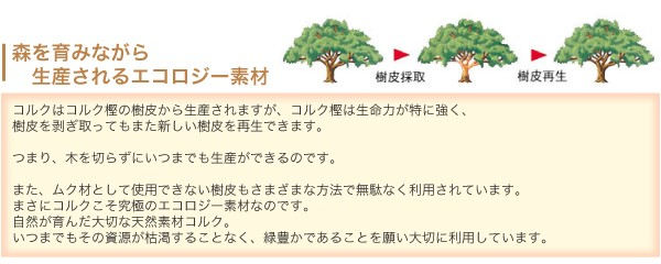 森を育みながら生産されるエコロジー素材のコルクマット