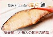 新潟村上の味 塩引鮭