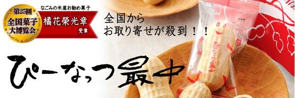 千葉銘菓 ぴーなっつ最中 落花生の和菓子 贈り物にとても人気でメディア多数掲載!