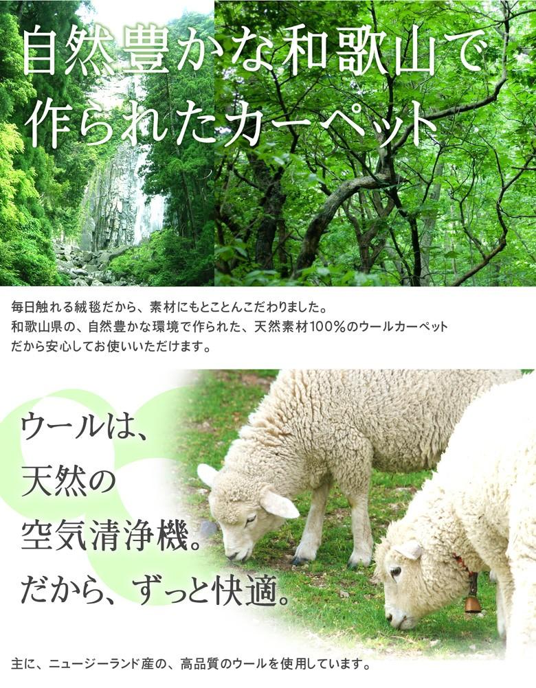 自然豊かな和歌山で作られたカーペット。ウールは天然の空気清浄機。だからずっと快適