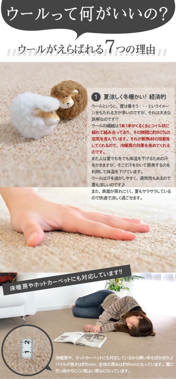 ウールが選ばれる理由。カーペットは経済的。ウールの繊維は冷暖房の効果を高めてくれるので節電対策にもなります。