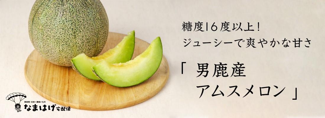 秋田県男鹿市産アムスメロン