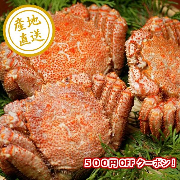 【店内全品対象】なまらグルメクーポン♪10,000円以上お買い上げで500円OFF!
