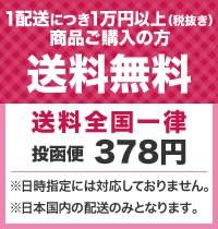 1配送につき1万円以上(税抜き) 商品ご購入の方 送料無料