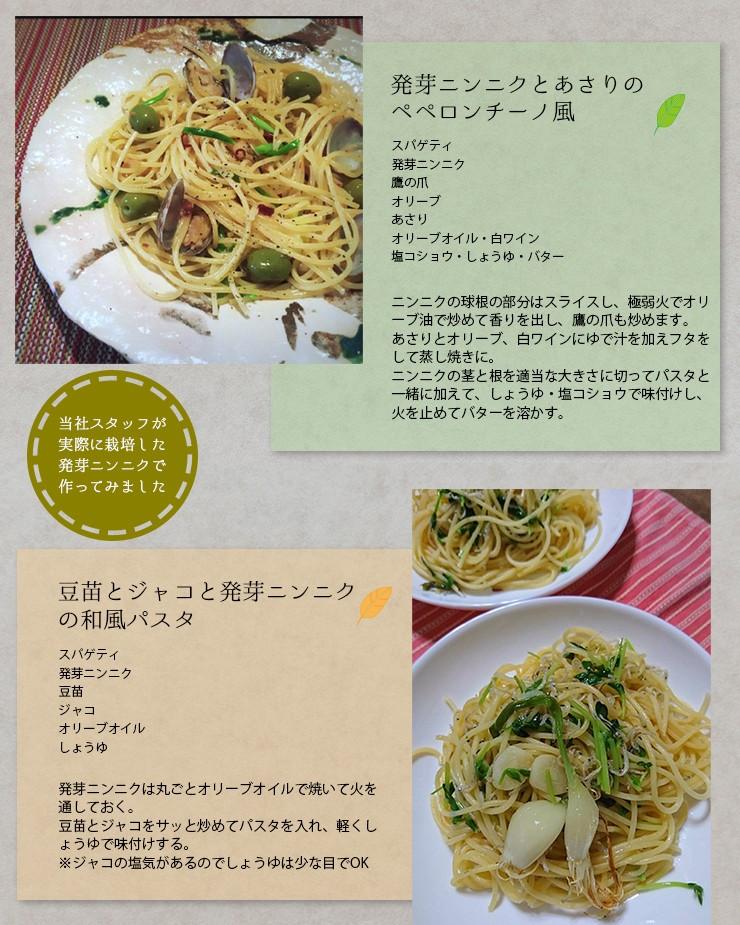 レシピ パスタ ペペロンチーノ 豆苗とジャコ