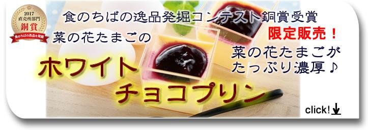 銅賞受賞ホワイトプリン