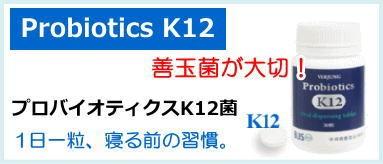口腔内乳酸菌 プロバイオティクスK12