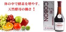 第一酵母 コーボン
