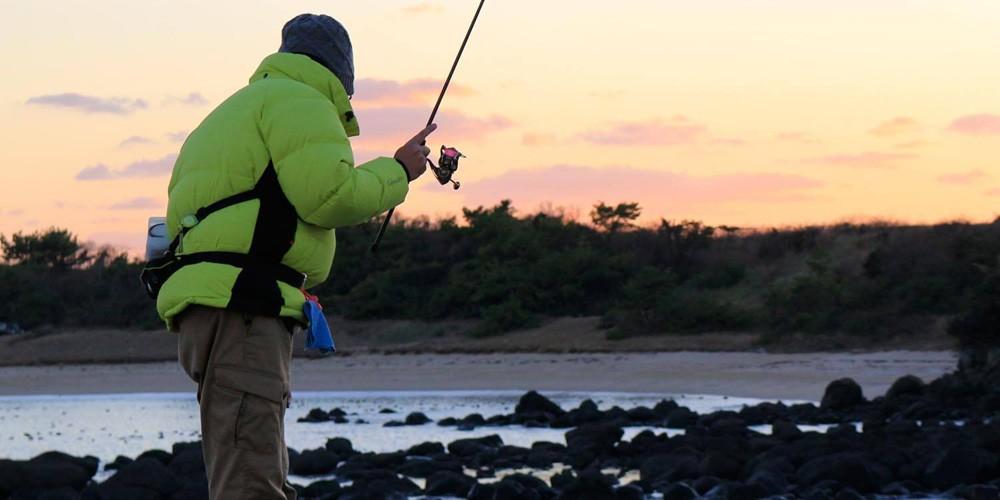 釣れやすい時間帯は、夜!