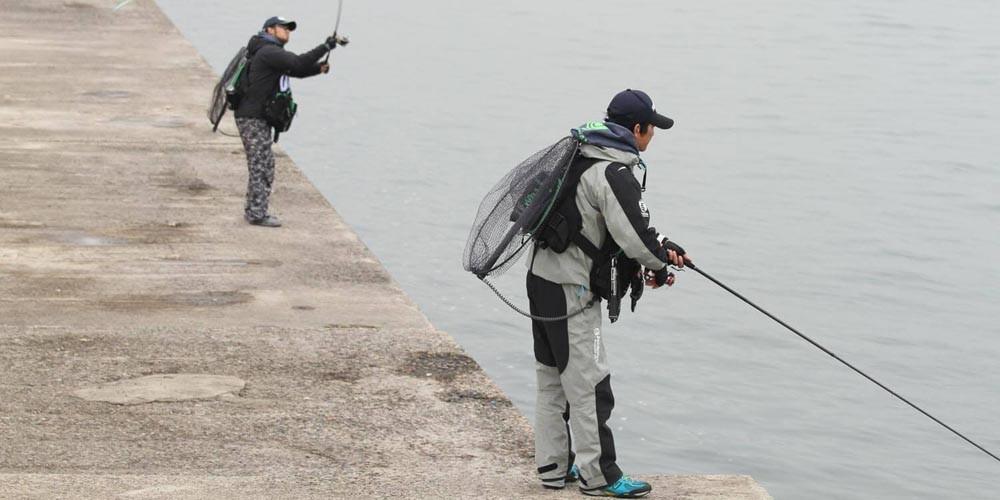 シーバスを釣ってみよう!