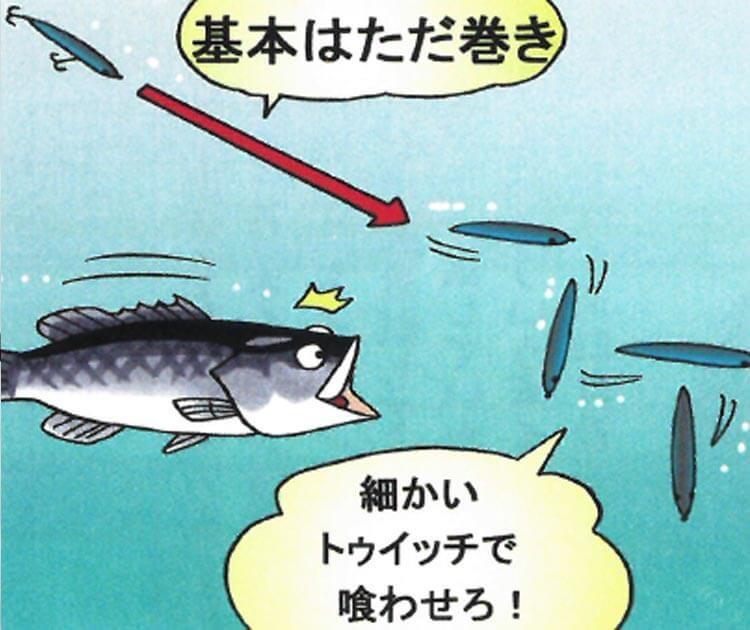 シーバスフィッシングってどんな釣り?基本はただ巻きでOK!