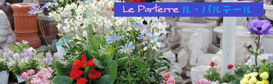 花 ギフト ル パルテール