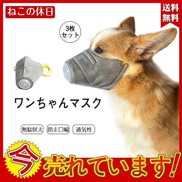 コロナウイルス 5ちゃん