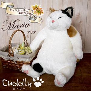 cuddly マリア