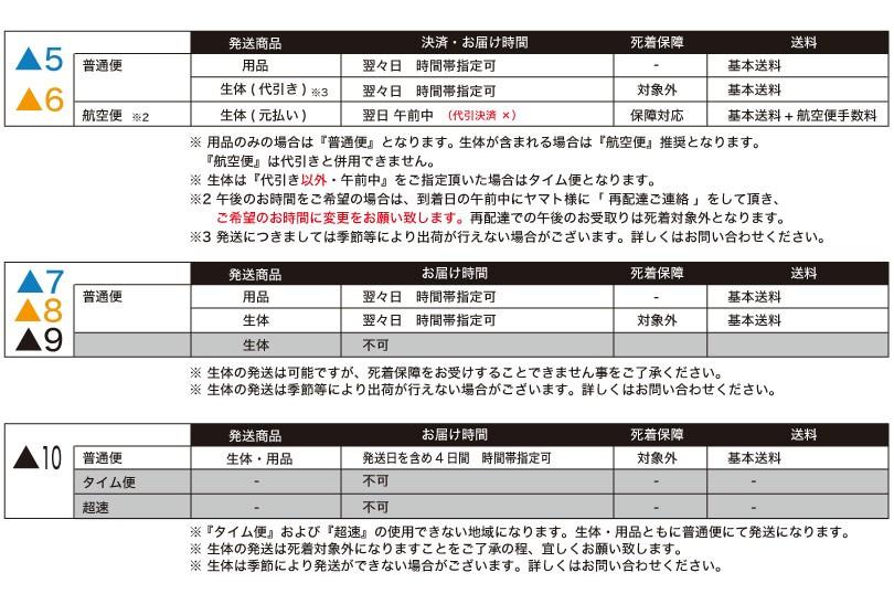 航空便手数料 詳細2