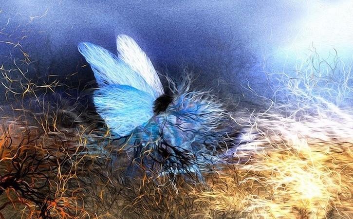 ネルバの新作「小さいピアノ犬、花の世界を