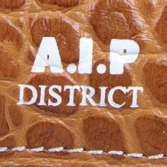 A.I.P(エーアイピー)のウエストバッグ ショルダーバッグ