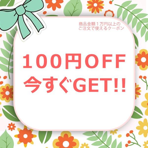 1万円(税込)以上のお買い上げで、 100円OFF