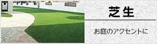 芝生        お庭のアクセントに