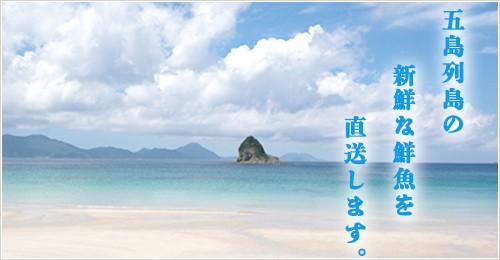 五島列島の新鮮な鮮魚を直送します。