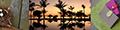 にこりーnicori ロゴ