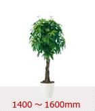 1400〜1600mm