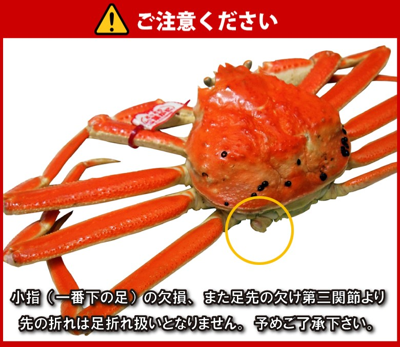 日本海市場 - タグ付き 特上松葉...