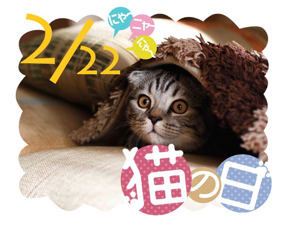 2月22日は猫の日!猫アイテムピックアップ
