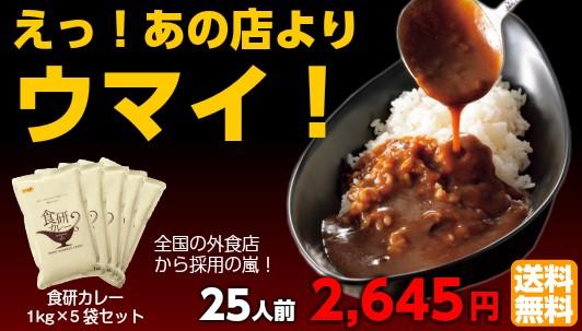 食研カレー1kg×5袋