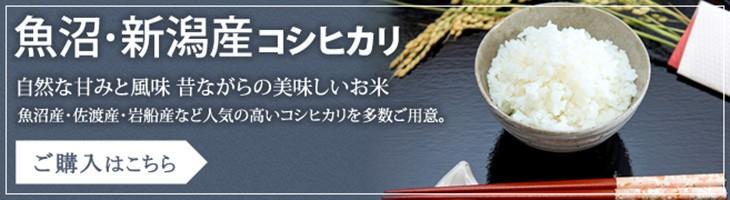 新潟コシヒカリ
